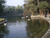 Lake at Lodhi gardens