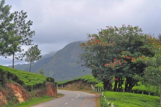 Andipatti Hills