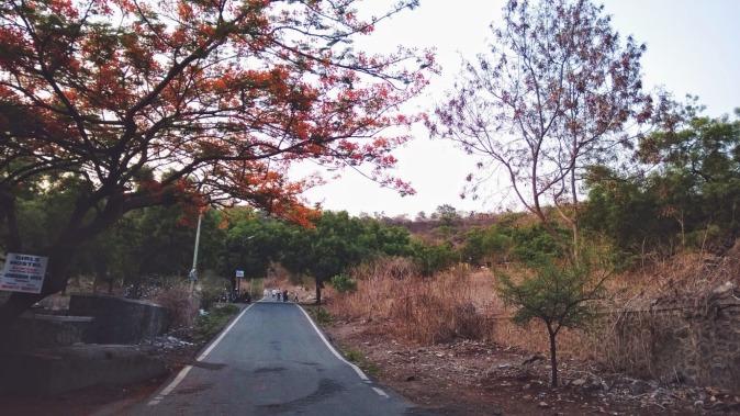 Vetal Hill Pune